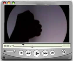 shadowpuppetry.jpg