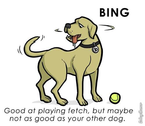 pet-bing