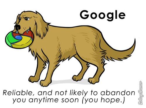 pet-google