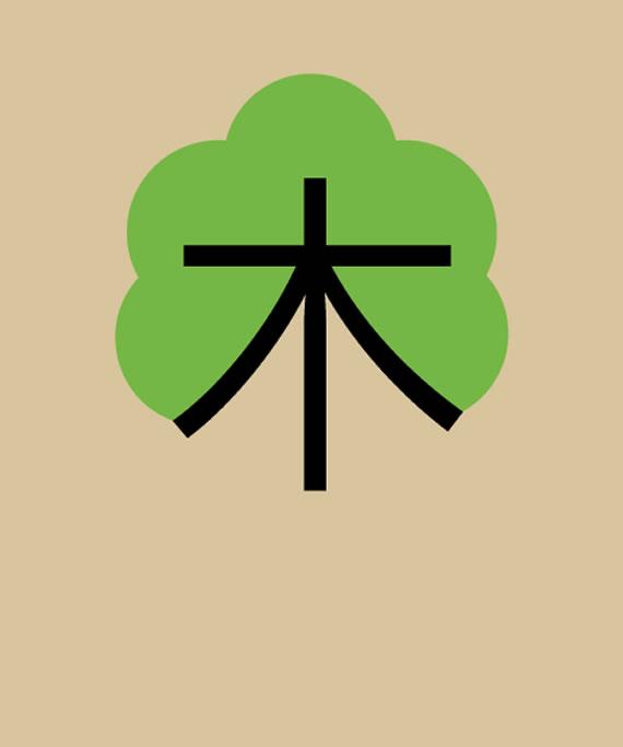arbol-chino