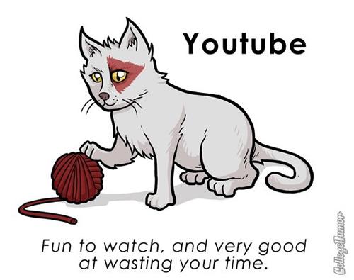 pet-youtube