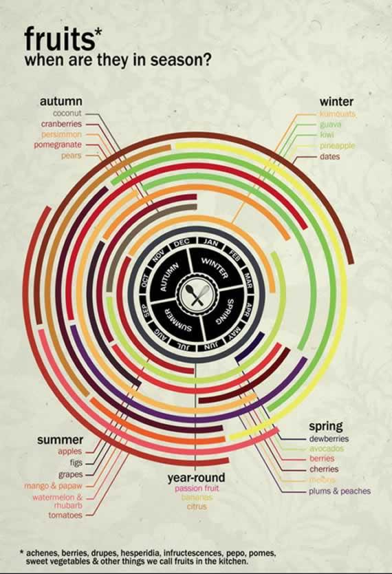 infographics-2013-3